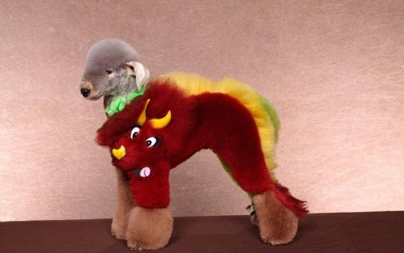 dressedtokill-doggrooming2