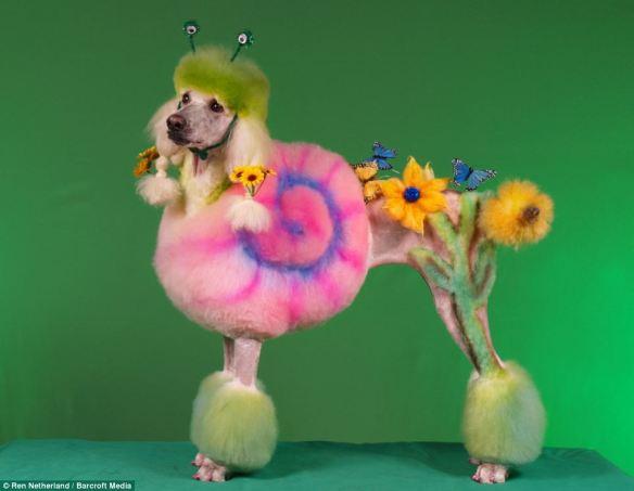 dressedtokill-doggrooming5