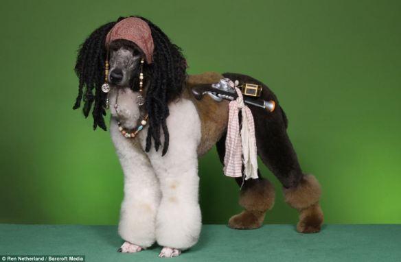 dressedtokill-doggrooming7